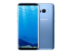 s8-blue-coral